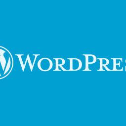 wp-freelance.nl